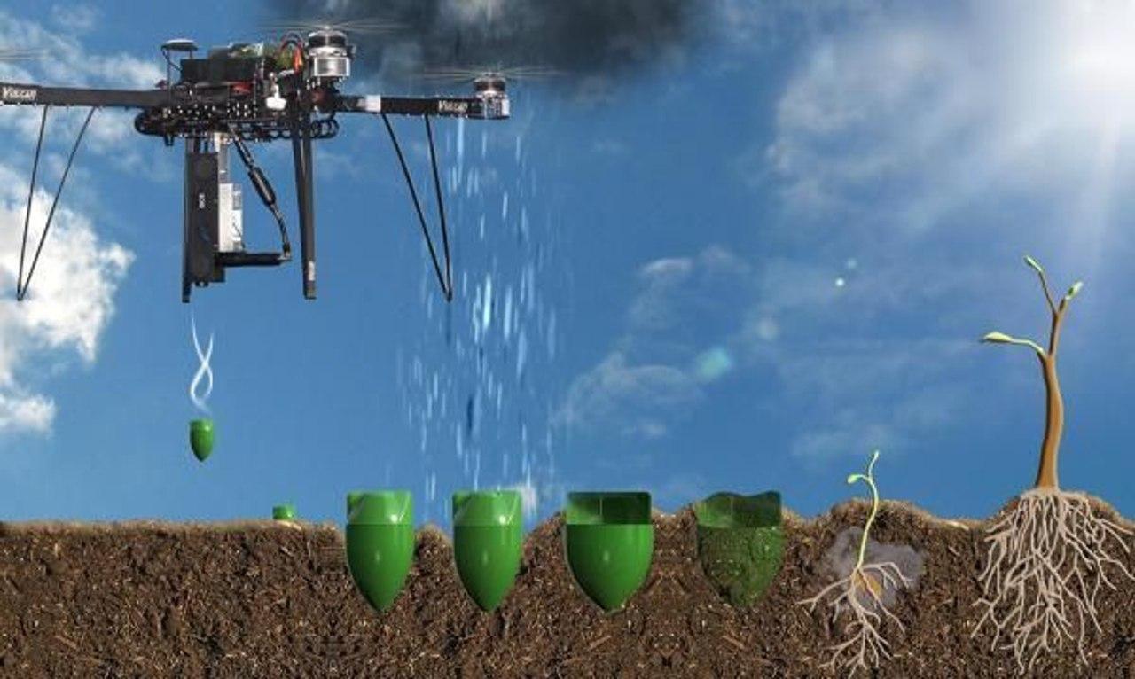 Дроны для высадки деревьев смогут посадить 100 000 деревьев в день