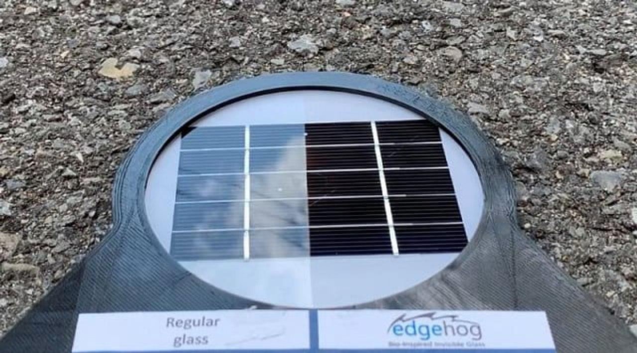 Французский стартап Edgehog разработал антибликовое стекло, которое увеличивает эффективность солнечных панелей на 12%