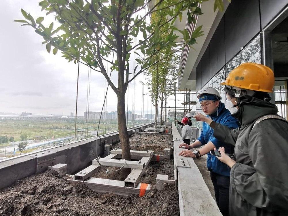 В Китае активно расцветают «зеленые небоскребы»