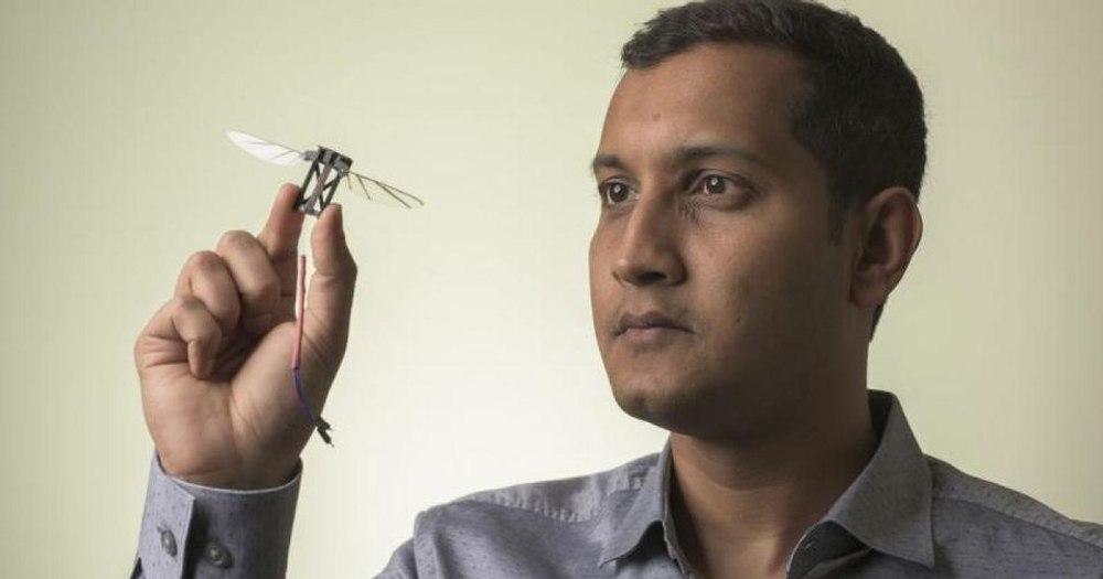 Ловкость пчел научит дроны летать в ограниченном пространстве