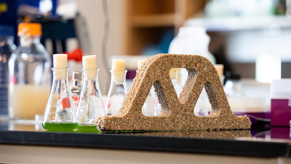 «Живой» бетон созданный с помощью микробов сможет поглощать парниковый газ