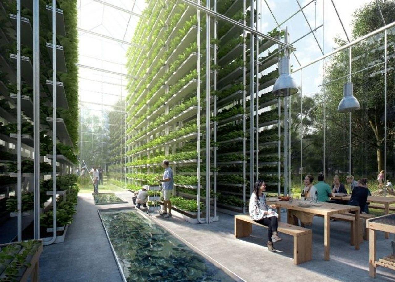 В Нидерландах строят энергонезависимый экогород с собственным производством пищи