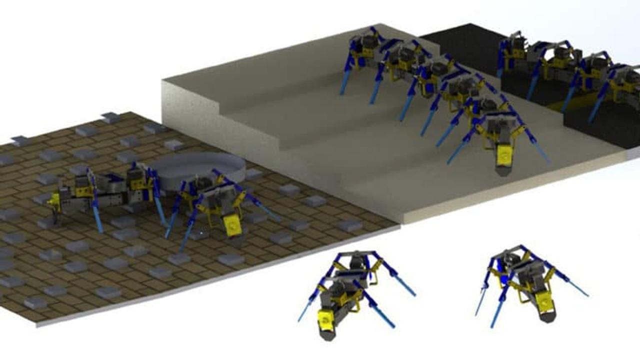 Рой четырехногих роботов, вдохновленных муравьями, преодолеет любые препятствия