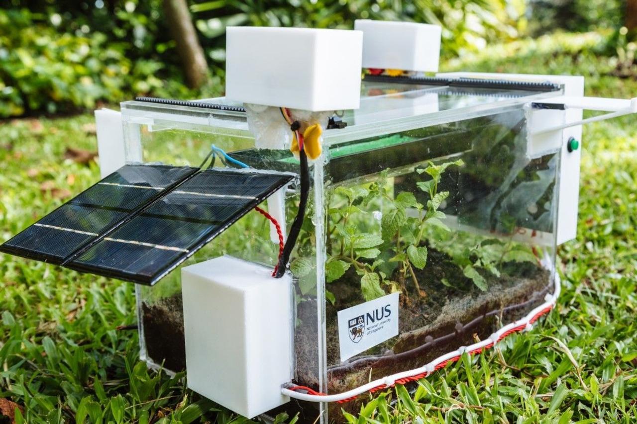 Автономная SmartFarm орошает растения, используя воду, собираемую из воздуха