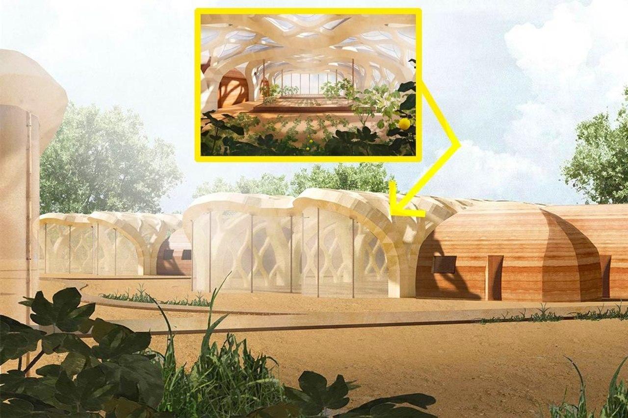 Надувная теплица из бамбуковой целлюлозы отличная альтернатива парникам из полиэтиленовых пленок