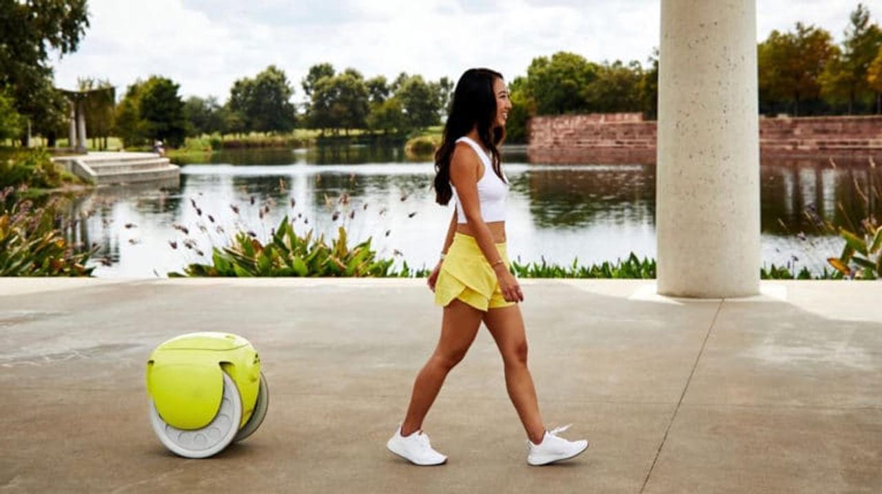 Грузовой робот Gitamini, везде следует за своим владельцем