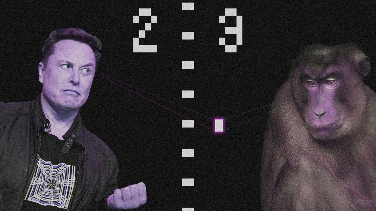 Парализованный мужчина вызвал обезьяну с чипом в мозгу Neuralink на матч в пинг - понг