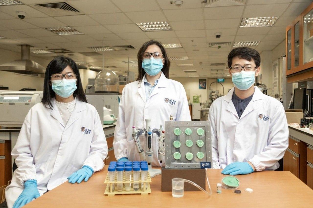 Ученые из Сингапура создали «умный» аэрогель, который превращает воздух в  питьевую воду