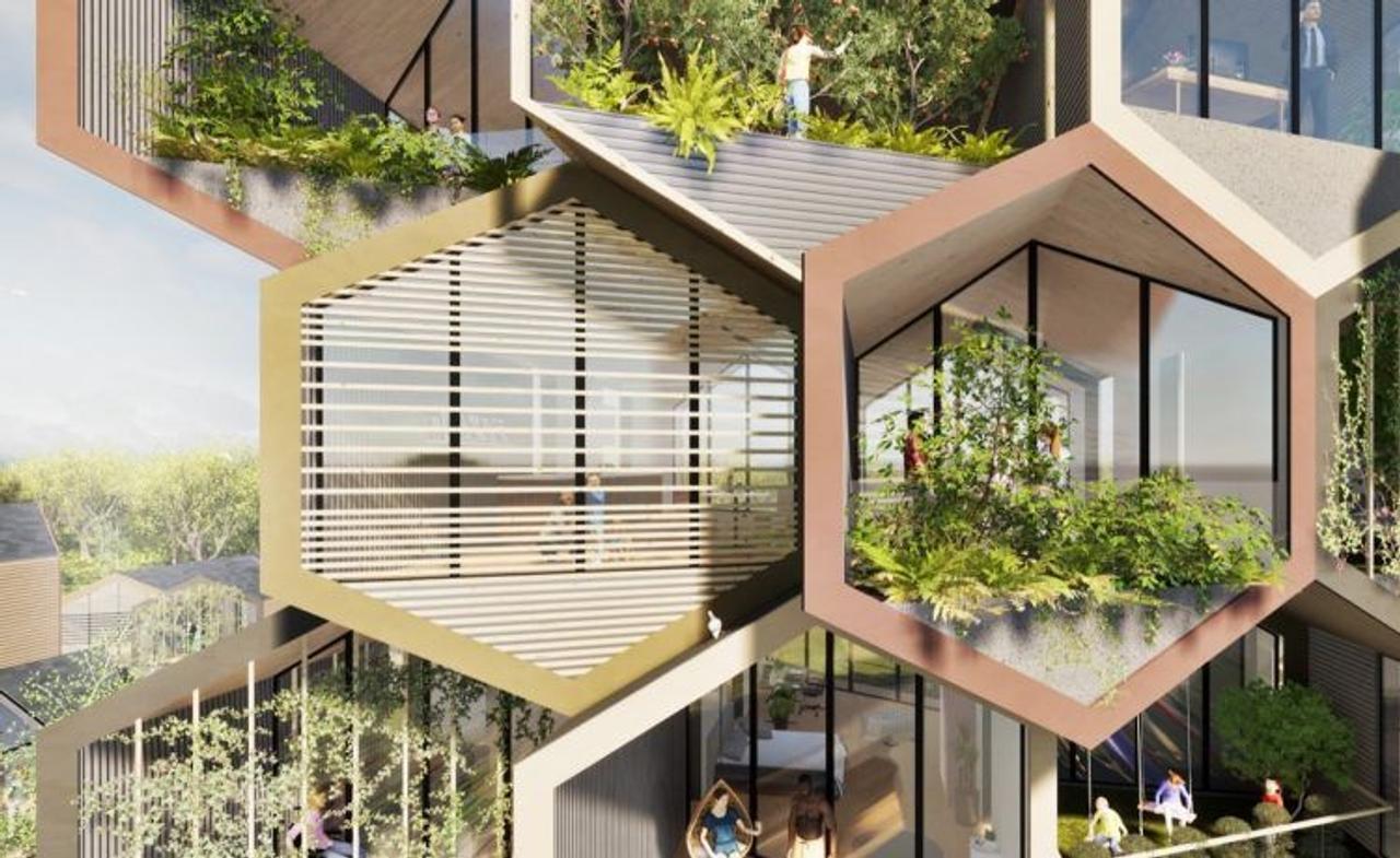 Самодостаточные дома будущего; Модули - соты с низким уровнем выбросов углерода и энергии
