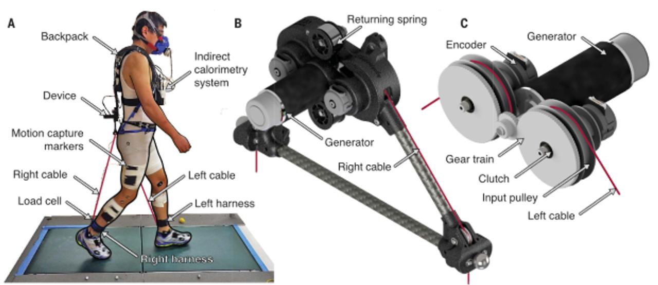 Экзоскелет превратили в генератор, который вырабатывает энергию при ходьбе