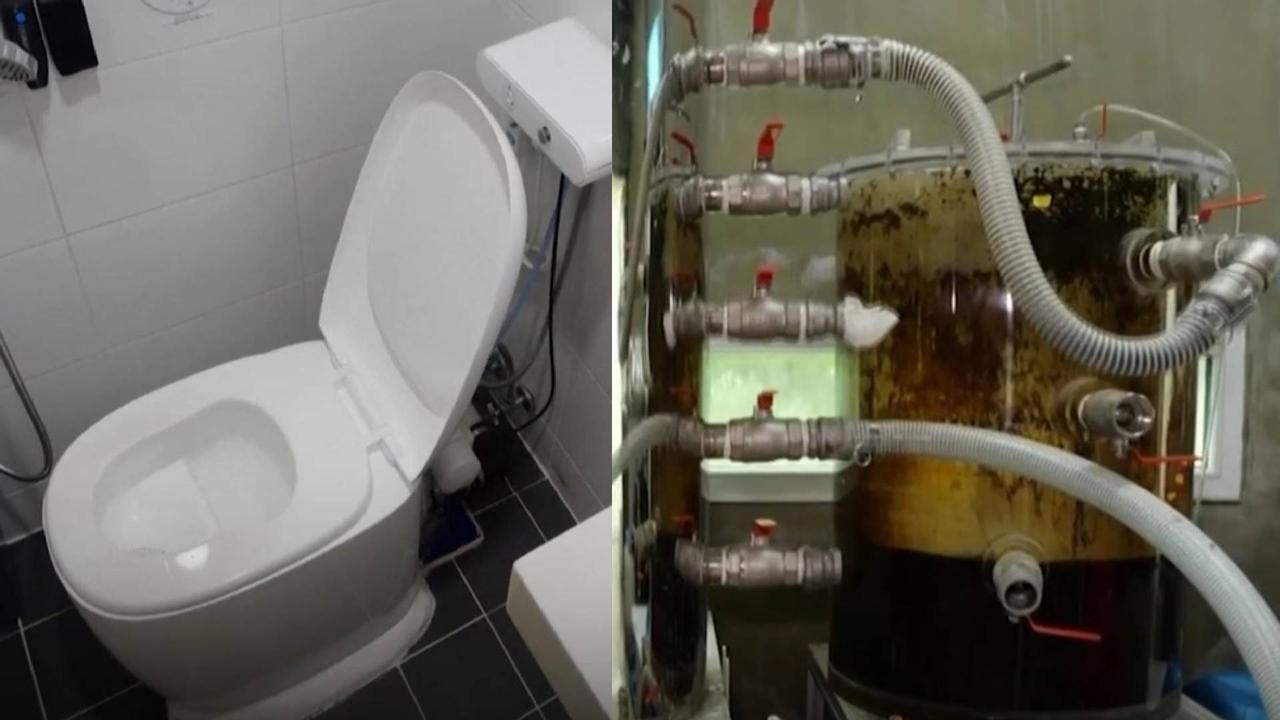 Экологичный туалет превращает фекалии в зеленую энергию и цифровую валюту