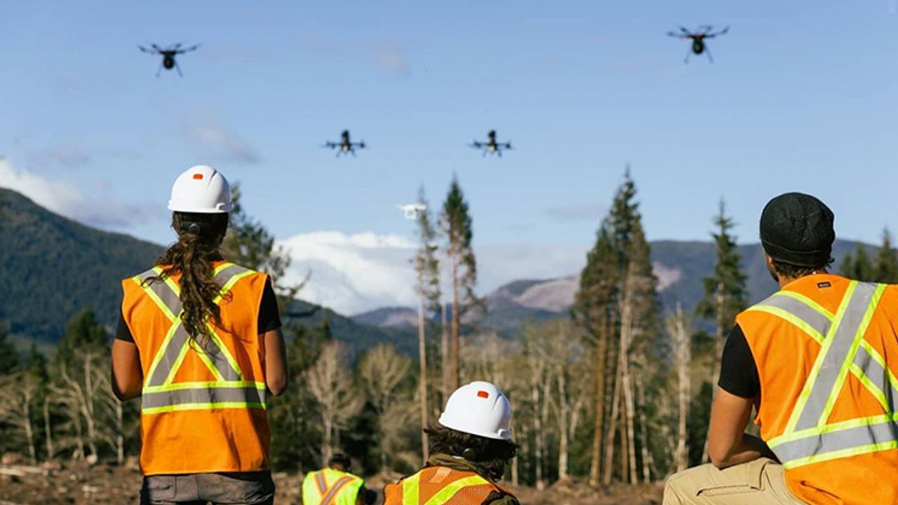 Дроны способны высадить 1 миллиард деревьев за короткий срок