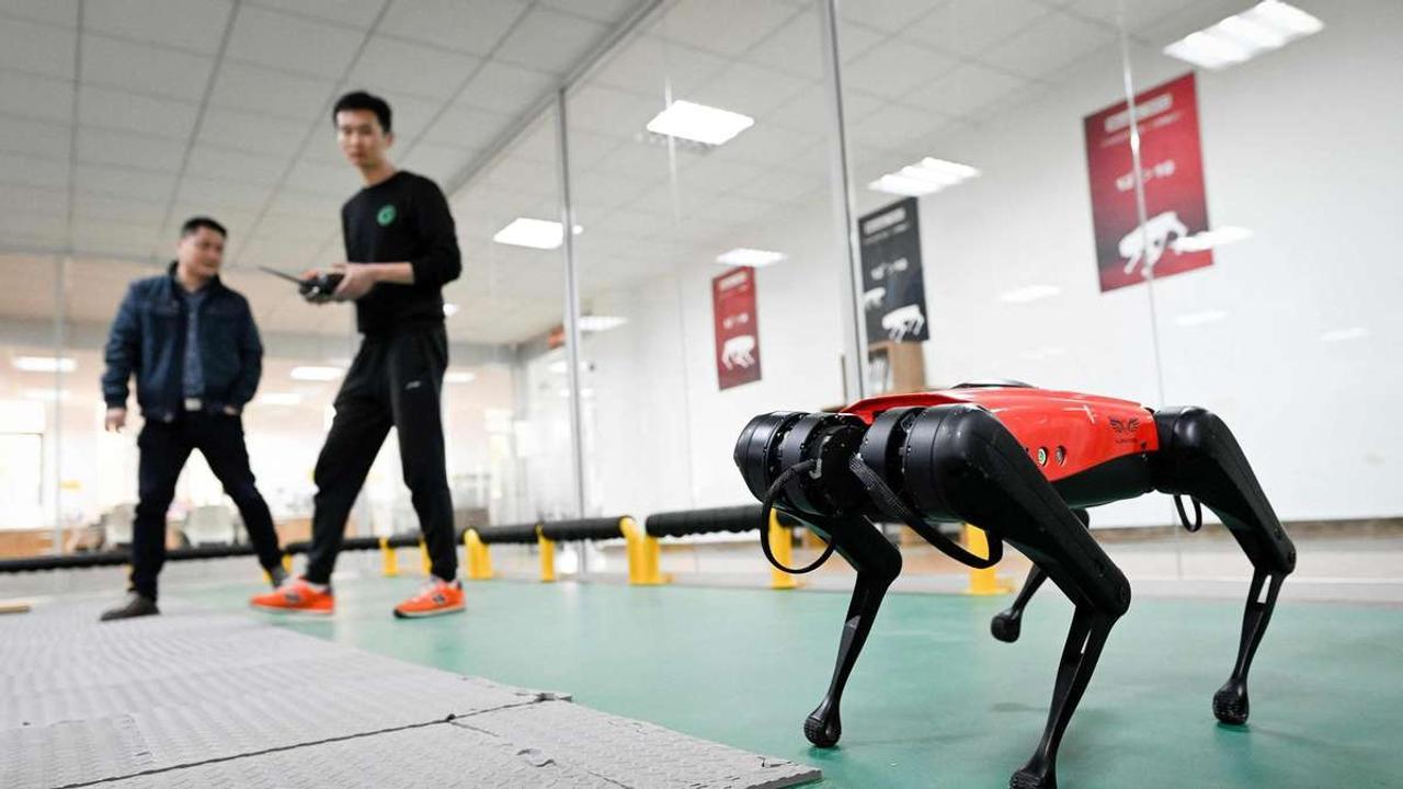 Китайские инженеры разработали робота - собаку AlphaDog для охраны людей и имущества