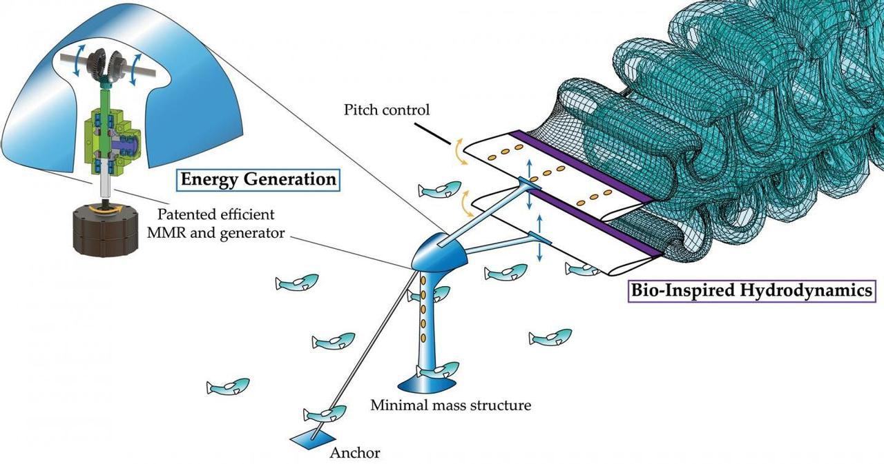 Инновационная гидроэнергетика: био-турбина на подводных крыльях