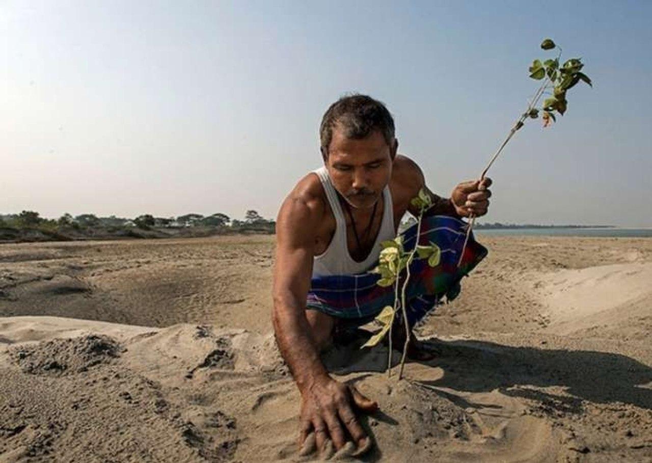 Индиец Джадав Пайенг за 40 лет превратил пустыню в заповедный лес