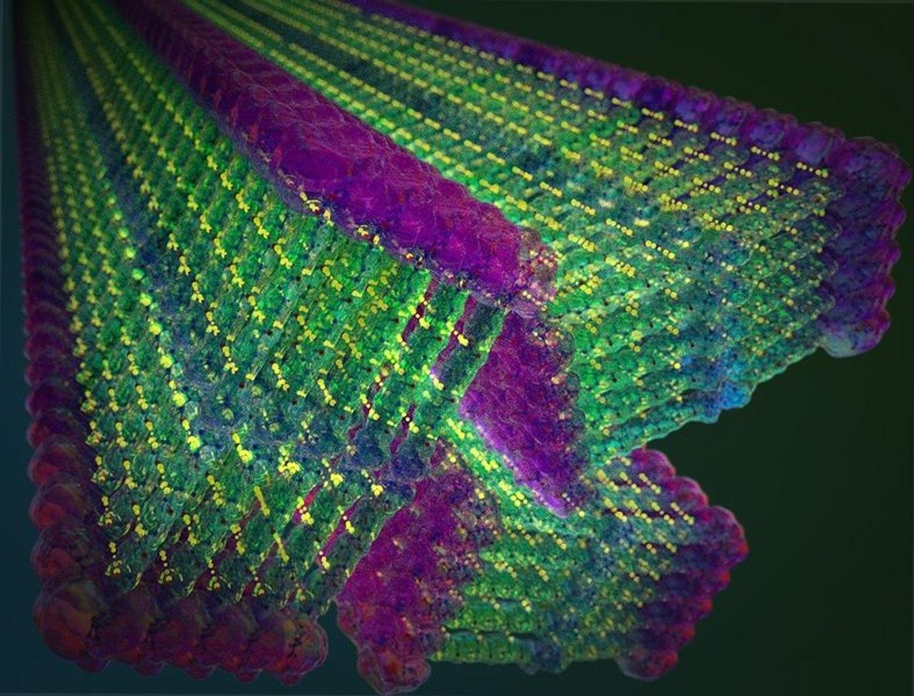Самоформирующиеся наноленты на основе кевлара прочнее стали